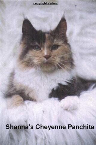 Image of Shanna Cheyenne Panchita