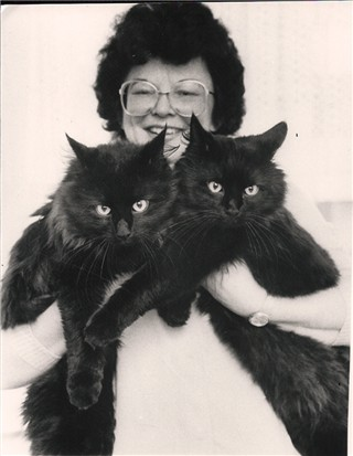 Image of Zamba zum Katzenrech